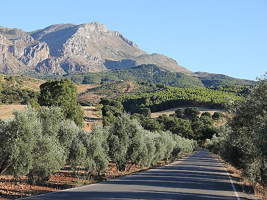 Cycling Andalucia.