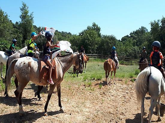 En promenade avec les chevaux