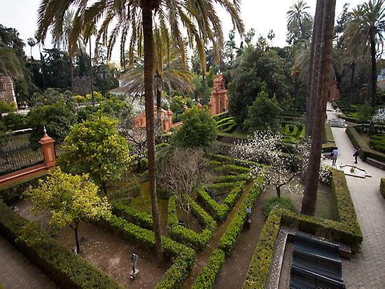 Gardens in the Royal Alcázar