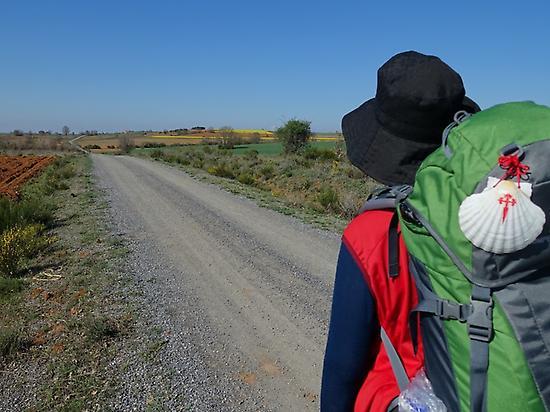 Camino primitivo walking