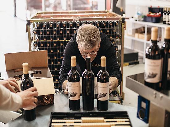 Wine-experience