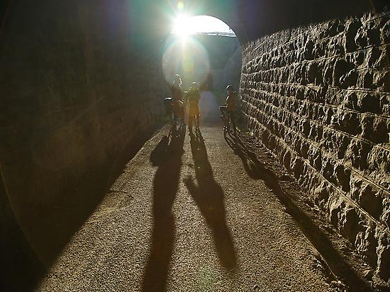 There are many tunnels; big fun!