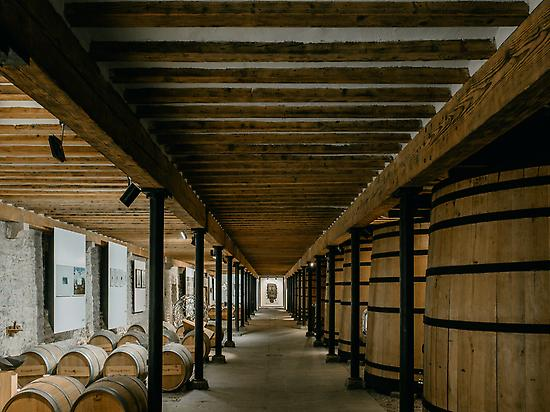Art collection / ancient winemaking area