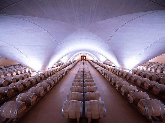 Barrels room, the Wine Cathedral
