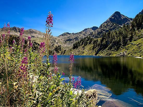 Baciver lakes