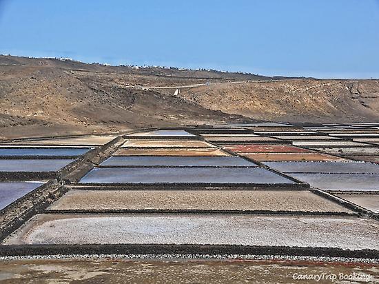 Salt flats in Lanzarote