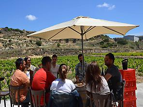 Wine tasting in the vineyards of Batea