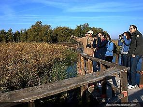 Guided Visit in Tablas de Daimiel NP