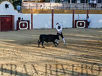 Bull trimmer