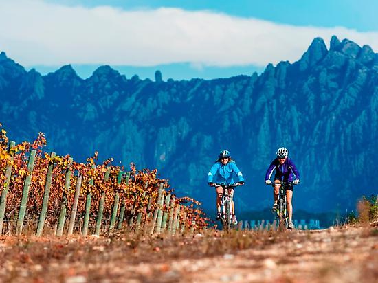 Penedés, Bike & Wine