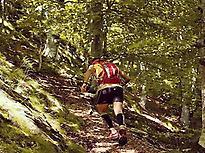 Walking old trails