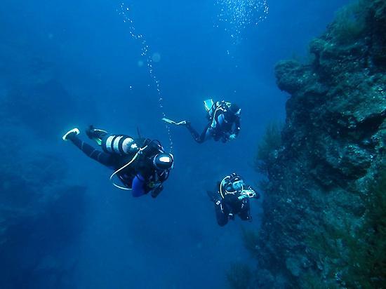 Diving Baptism in Puerto de Naos