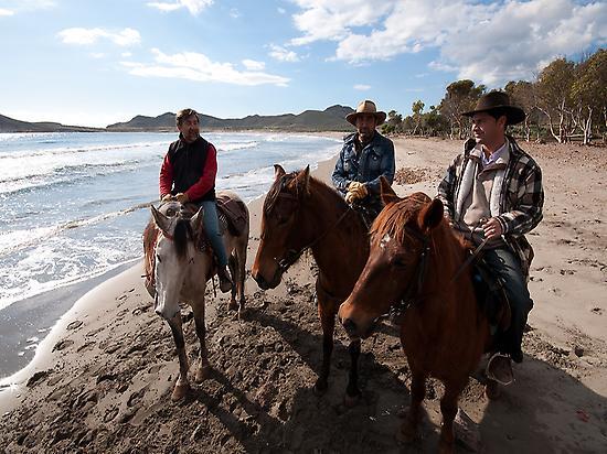 Horse ride on the beach