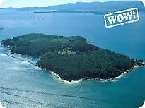 Photo: Cortegada Island
