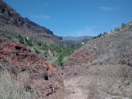 Fataga Canyon