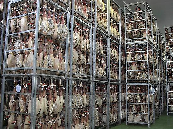 Iberian hams drying shed.