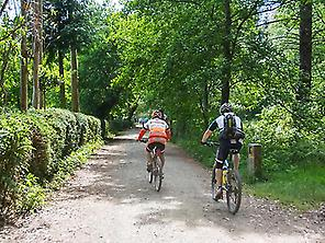 THE CAMINO DE SANTIAGO BY BIKE