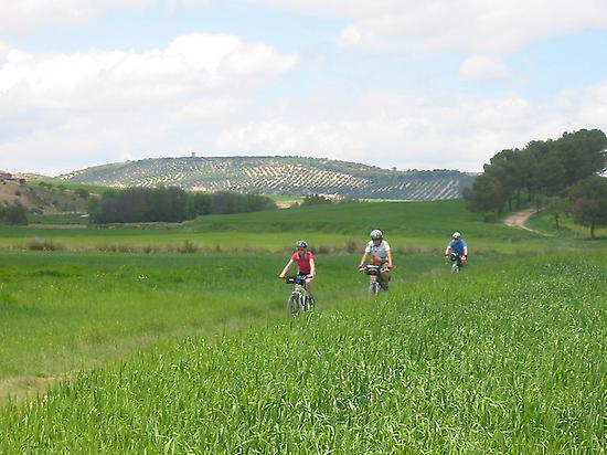 CYCLING TO TOZAR