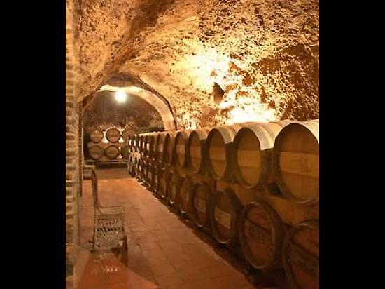 Wineries in laguardia