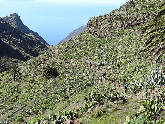 Discovering La Gomera, the Magic Island