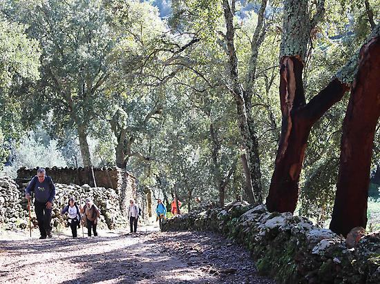 Walking Aracena