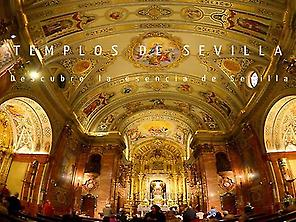 Main Sevillan Brotherhoods Temples Tour