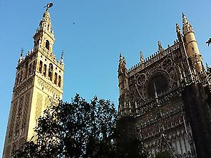 The Seville´s Cathedral