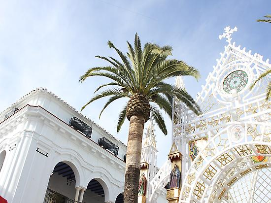 Doñana Tour from Seville