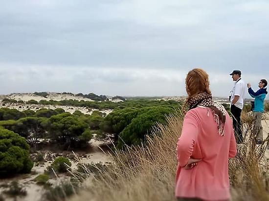 From Seville to Doñana