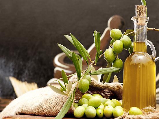 Visita Molino de aceite de oliva