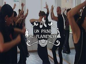 Die kunst des Flamenco