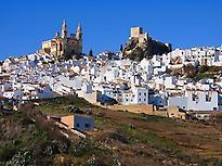 White towns