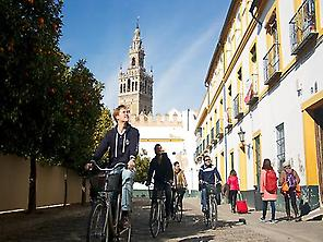 CycloTour Sevilla Monumental by bike