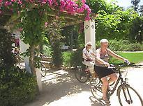 Tour diario en bicicleta Sevilla