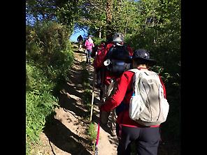 Our pilgrims walking the Camino