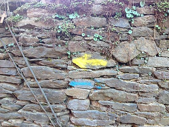 Follow the arrow and enjoy the Camino