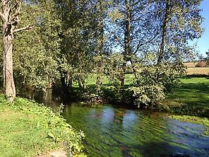 River at Ribadixo before Arzúa