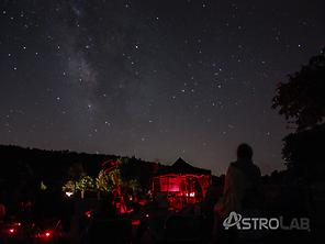 Stargazing: Stars forest