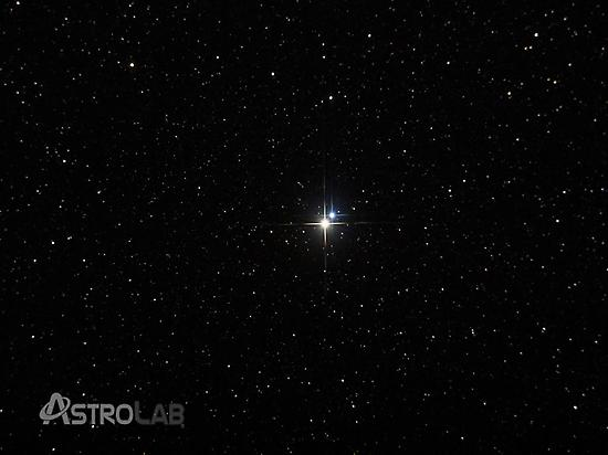 Stargazing: Stars forest