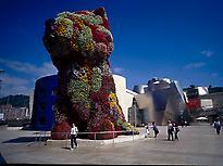 The Guggenheim Museum/Irekia