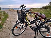 Bikes in the Albufera