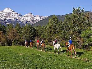 Paseos en caballos o Ponis