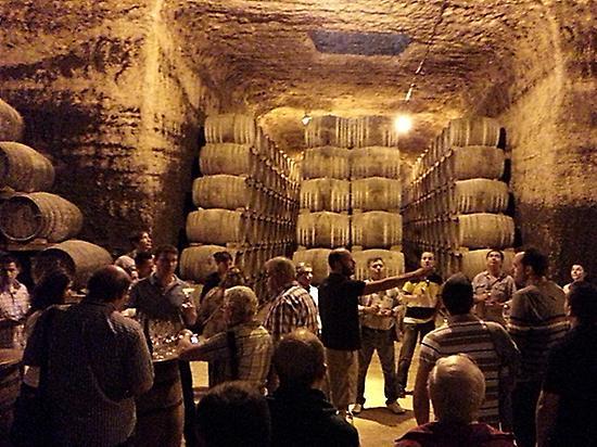 Visita bodega y cata de vinos