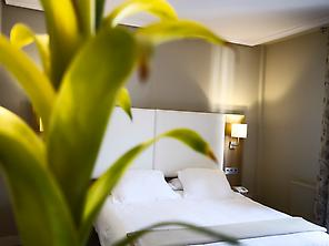Double Room Hotel Los Lagos Nature