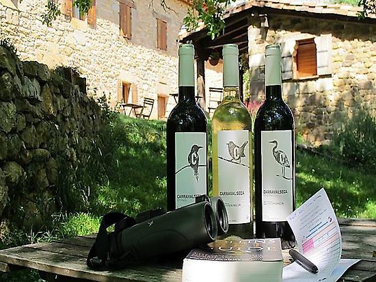 Birds & Wine