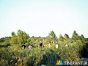 http://www.itinerantur.com