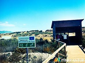 Prat de Cabanes - Torreblanca Nat. Park