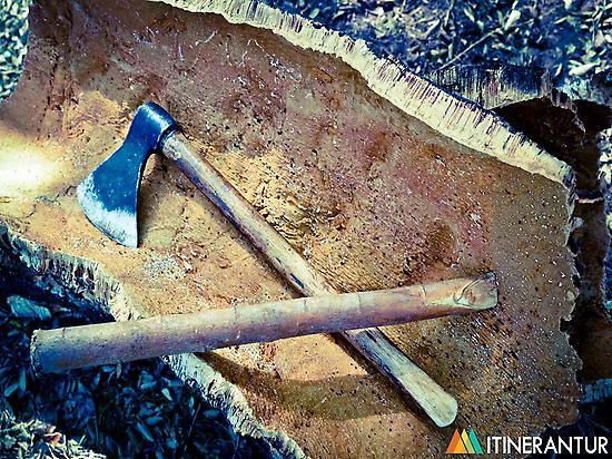 The removal cork in Sierra de Espadán