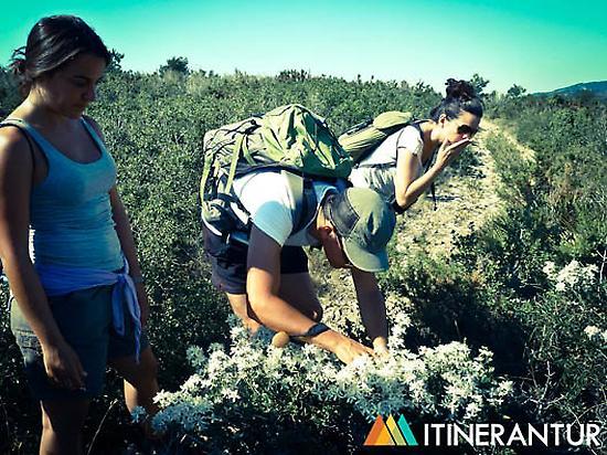 Interpretive hiking route.