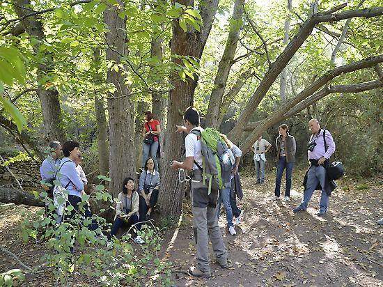 The wildest Sierra de Espadán Natural Pa